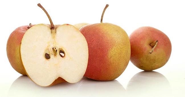 红肖梨的主要营养成分