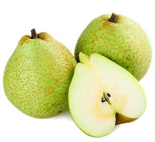 莱阳梨的主要营养成分